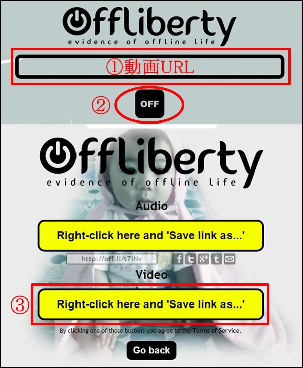 OfflibertyではYouTubeもMP3もダウンロードできない?代わりのおすすめは?1