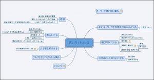 マインドマップとは?おすすめの無料ソフトXmindの使い方も!4